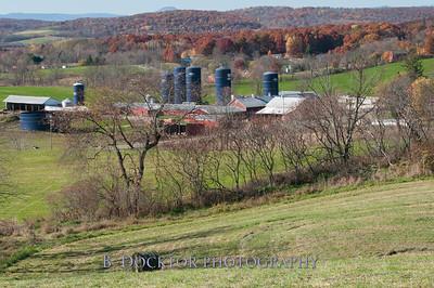 Millerhurst Farm-71