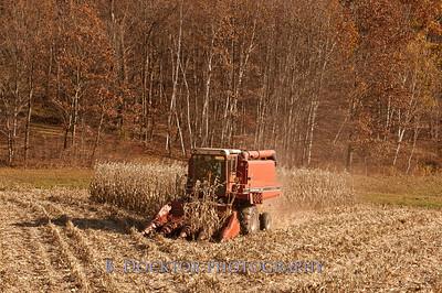 Millerhurst Farm -200