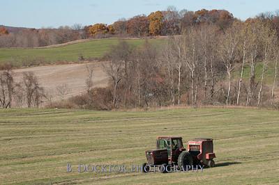 Millerhurst Farm-94