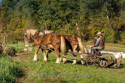 1810_Natural Roots Farm_055