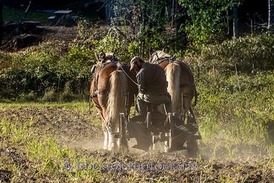 1810_Natural Roots Farm_035