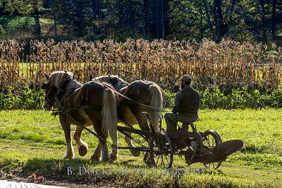 1810_Natural Roots Farm_026