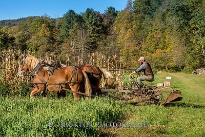 1810_Natural Roots Farm_058