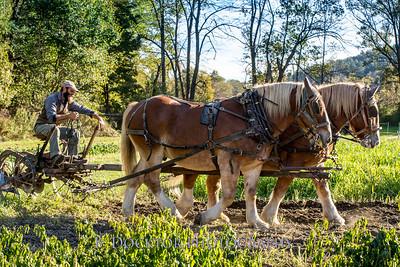 1810_Natural Roots Farm_100