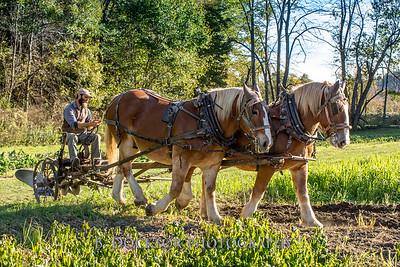 1810_Natural Roots Farm_099
