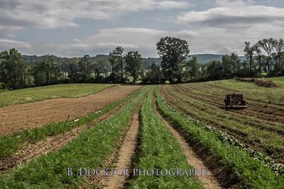 1708_Thompson Finch Farm_508-Edit