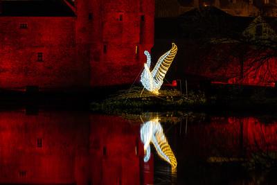 Christmas Swan_03