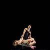Parsons Dance 2011 Joyce-101
