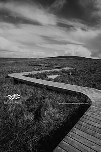 Legnabrocky Trail, Cuilcagh, Co Fermanagh © Ronan McGrade | www.ronanmcgradephotography.com