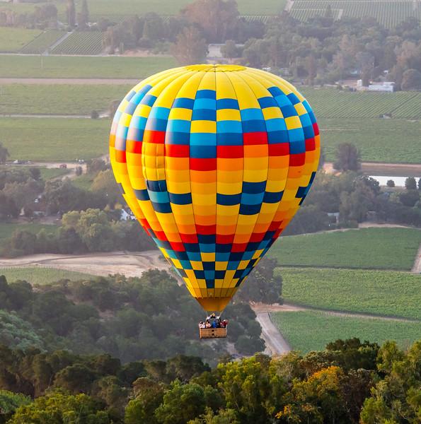 Napa Balloons Rick V hi-res r1-0496-001