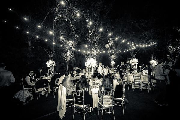 rachel-tomer-wedding-reception-4209