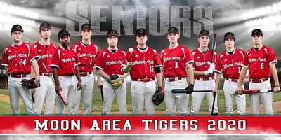 Baseball Group Banner