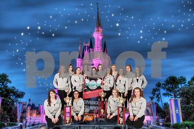 Team - Disney