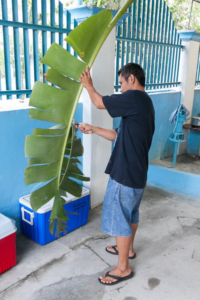 Juning cutting banana leaf for wrapping the rellenong bangus