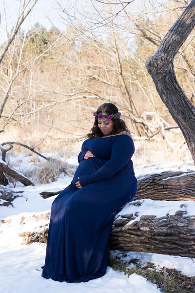 Jordan Maternity-5