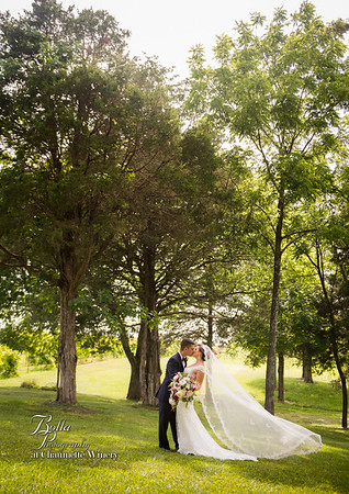 10x10 Multiple Weddings at Chaumette Winery