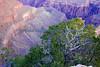 Grand Canyon sunrise 6
