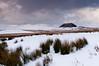 Snowy Slemish
