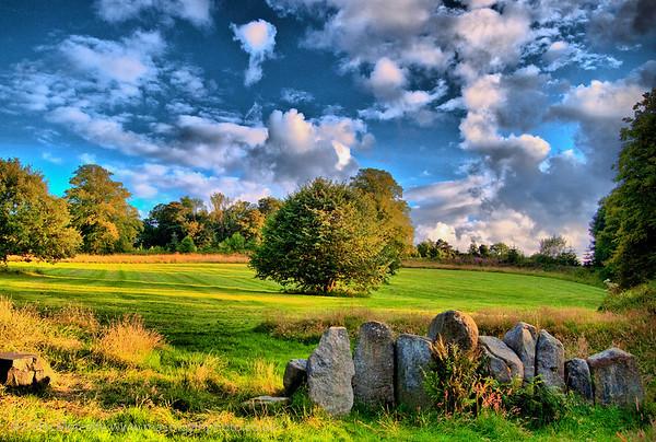 Old Stones, Castlewellan Forest Park