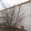 2008-03-09_17-54-30_DSC_5505
