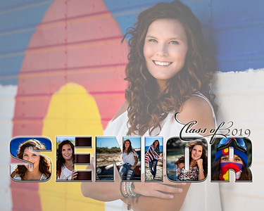 Clara Senior Collage