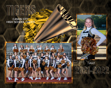 Lilly CCHS Cheer Memory Mate