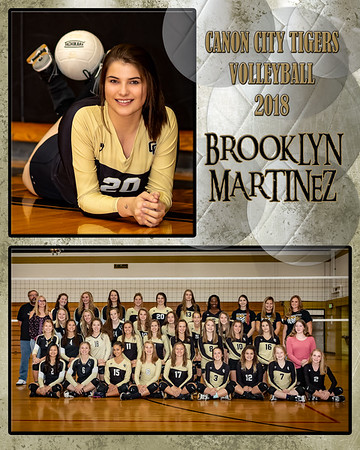 Brooklyn Martinez VB Memory Mate 2018