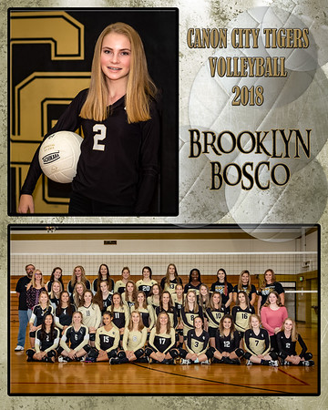 Brooklyn Bosco VB Memory Mate 2018