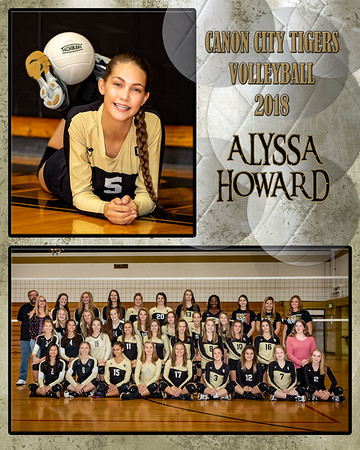 Alyssa Howard  VB Memory Mate 2018
