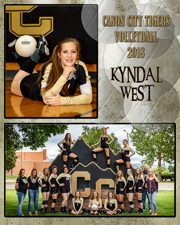 Kyndal West JV VB Memory Mate 2018