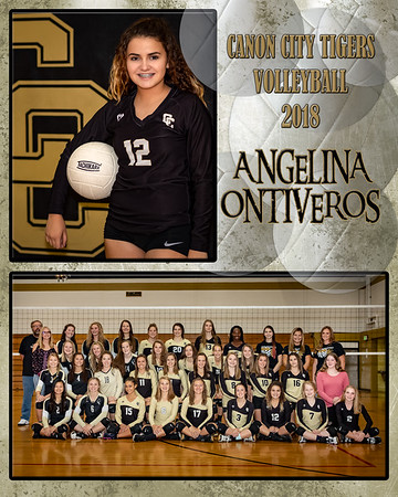 Angelia Ontiveros  VB Memory Mate 2018