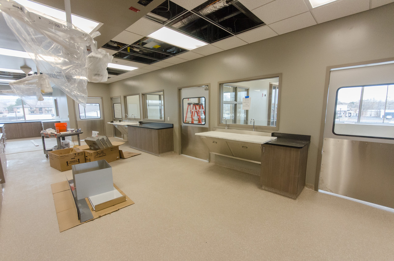 Induction Area & Surgical Suites