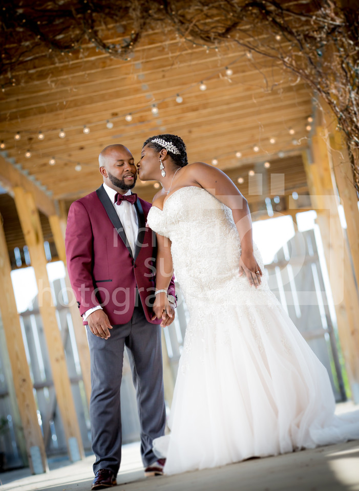 INTRO-Robert-Wanakee-Wedding-1