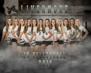 LHS JV Volleyball 2018