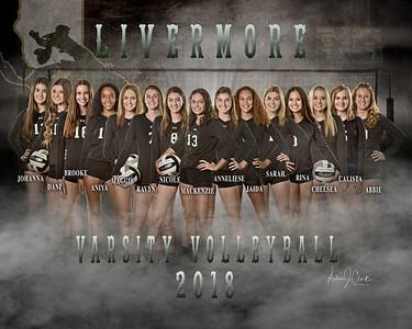 LHS Varsity Volleyball 2018