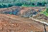 Amazon - Lebanon - March 19, 2012