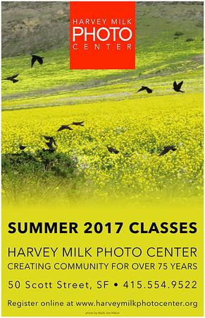 Summer 2017 Poster