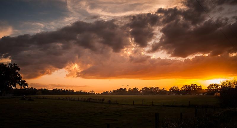 san ann sunsets 10-8695