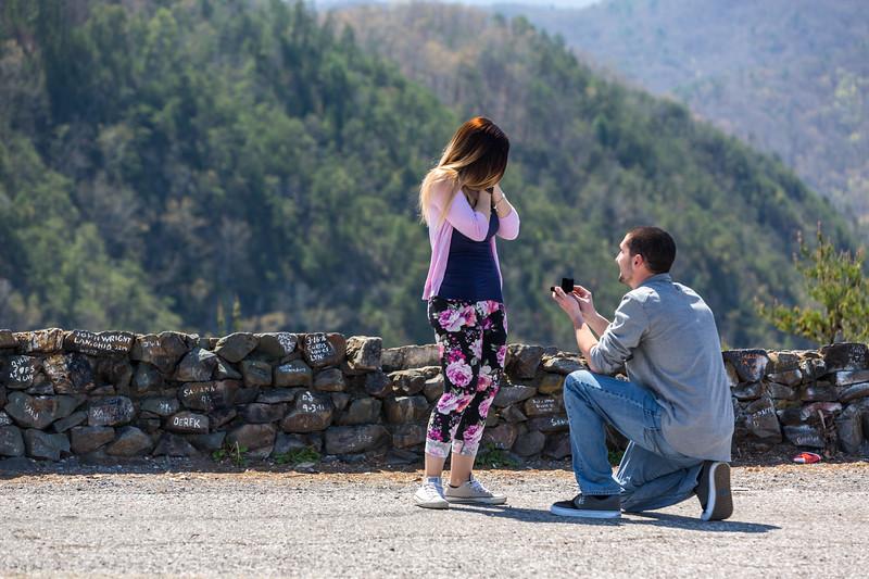 Brandon & Janelle Engagement