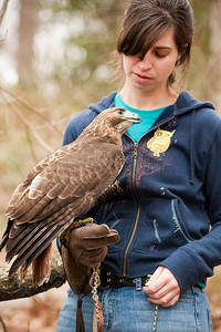 Raptor Conservancy of Virginia-34