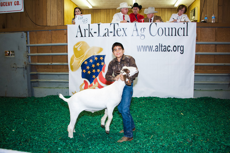 JuniorLivestockSale11 2016-87