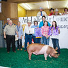JuniorLivestockSale11 2016-104