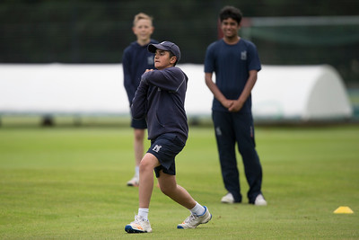 County Cricket- Warwickshire - Staffs - Friendly