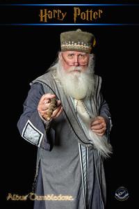 Bill Hatton-aka Dumbledore-V2-392