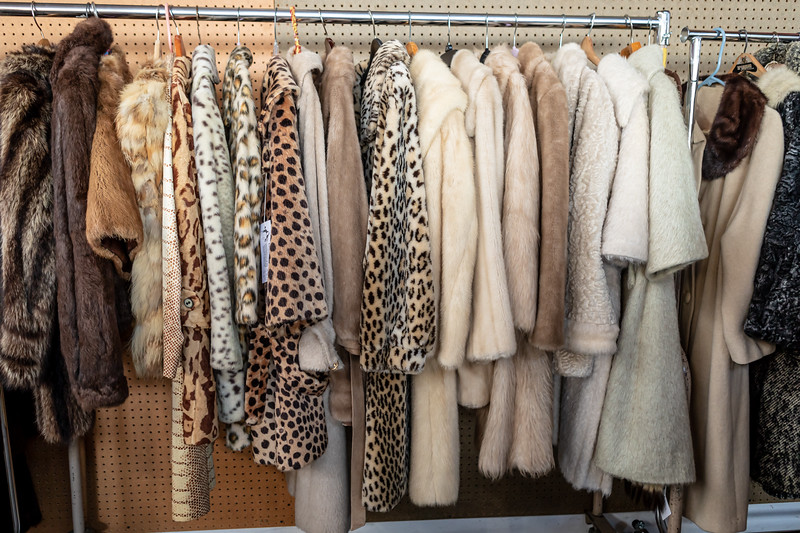 DAISY_ROSE_COBY_2019_FALL_ALAMEDA_VINTAGE_FASHION_FAIRE_0490
