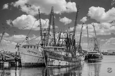 MV Miss Jordi-Shrimp Docks -B&W-7
