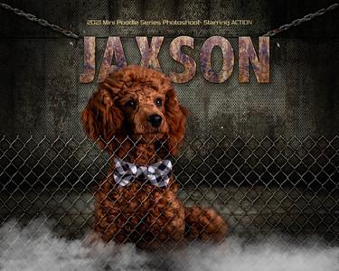 Action JAXSON-8x10
