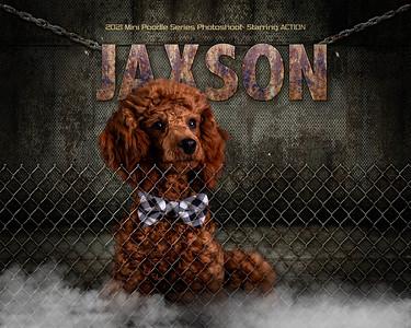 Action JAXSON-V1-8x10