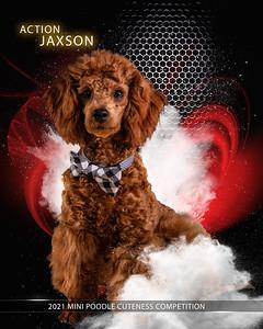 Jaxson -Explosion-8x10