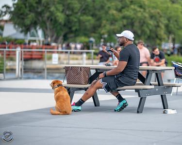 Man with Dog-15